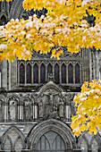 Nidaros Domkirke Cathedral, Trondheim, Norway
