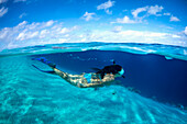 Snorkelling off a remote island, Marshall Islands