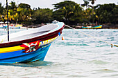 'The front of a colourful painted boat tied in bay with beach and trees in the background; Akumal, Quintana Roo, Mexico'