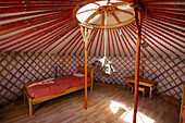 Rock hanging of the crown in the interior of a Mongolian Ger (yurt) tourist accommodation at the Gobi Tour Ger Camp, Bayanzag, South Gobi Province, Mongolia