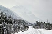 Mount Kerkeslin And The Icefields Parkway, Jasper National Park, Alberta Canada.