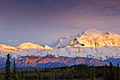 Sunset glow on Mt. McKinley, Denali National Park & Preserve, Interior Alaska, Summer.
