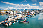 Boats docked in the Homer small boat harbor, Homer Spit, Kenai Peninsula, Southcentral Alaska, Summer