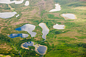 Aerial view of green tundra, small lakes and streams, Arctic Alaska, summer