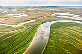 Aerial view of wetlands and lakes along the Kobuk River, Arctic Alaska, summer
