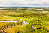 Aerial view of green tundra, wetlands, small lakes and streams, Arctic Alaska, summer