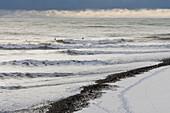 Surfing in winter in Homer, Kenai Peninsula, Kachemak Bay, Alaska.