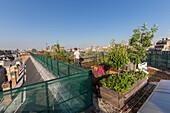 nicolas bel, engineer, experimental garden on the roof, agroparistech school, 5th arrondissement, paris (75), france