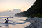 Beach No.7, or Radhanagar Beach, in the evening, forest without palms, West Coast, Havelock Island, Andaman Islands, Union Territory, India