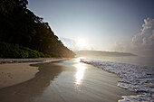 Beach No.7, or Radhanagar Beach, in the early morning, forest without palms, West Coast, Havelock Island, Andaman Islands, Union Territory, India