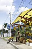 Bananas de Ouro (Golden bananas), fruit and vegetable shop on the main road SP 125 in Ubatuba, at Parque Serra do Mar, Costa Verde, Sao Paulo, Brazil