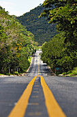 Rodovia Rio - Santos, SP -101, coastal road leading through a coastal forest in Picinguaba, Costa Verde, Sao Paulo, Brazil
