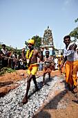 Believer walking on hot coals, Sri Vinayagar temple festival, annual Hindu festival in the village of Nadukahni, northwest of the Nilgiri Hills (Ooty), Western Ghats, Tamil Nadu, India