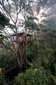 Treehouse Room 601, Treehouse 1 at Vythiri Resort near Lakkidi, Wayanad, northeast Kozhikode, Kerala, Western Ghats, India