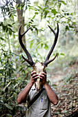 Hike through wild forest without path, Guide Bijish found skull of Samba Deers, Talimala Reserve Nature Reserve Forest at Vythiri Resort near Lakkidi, Wayanad, northeast Kozhikode, Kerala, Western Ghats, India