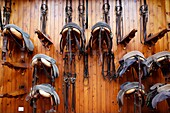 The Royal Andalusian School of Equestrian Art, Equipment, Saddles and Harnesses, Jerez, Spain