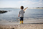 3 years old boy fishing with a net at the beach