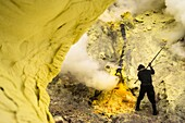 Minerworker exposed to toxic sulfur gas of the mine (devil's mine) inside the volcano Ijen on the island of Java and using a crowbar for taking down solidified sulfur, East Java, Ijen volcano, Indonesia