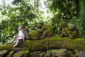 Monkey sitting with mossy statues in jungle