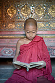 Asian monk-in-training reading book in temple