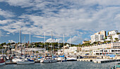 Yachts moored in Torquay marina, South Devon, England, United Kingdom, Europe