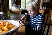 4 year old boy chopping chanterelle mushrooms inside an alpine hut, alp, holiday, MR, Maria Alm, Berchtesgadener Land, Alps, Austria, Europe