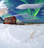 Northern Lights (aurora borealis) over an abandoned log cabin surrounded by snow, Flakstad, Lofoten Islands, Arctic, Norway, Scandinavia, Europe