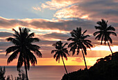sunset with view to palm trees und Caribbean sea, Soufriere, St. Lucia, Saint Lucia, Lesser Antilles, West Indies, Windward Islands, Antilles, Caribbean, Central America
