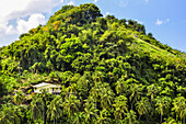 house on a hill in palm tree forest near Kingstown, St. Vincent, Saint Vincent and the Grenadines, Lesser Antilles, West Indies, Windward Islands, Antilles, Caribbean, Central America