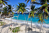 young woman on a tropical beach with palm trees, sea, Bottom Bay, south coast, Barbados, Lesser Antilles, West Indies, , Windward Islands, Antilles, Caribbean Islands, Central America