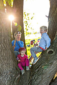 Children climbing a tree, family bicycle tour along the river Elbe, adventure, from Torgau to Riesa, Saxony, Germany, Europe