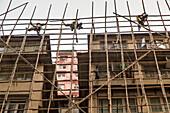 Arbeiter klettern im Bambusgerüst, Abbau, Akrobaten, ohne Sicherung, grafisch, Raster, Arbeitssicherheit, Gerüst, Monteure, Rückbau des Baugerüsts, Fassade, Baustelle, Wohnhaus, Hong Kong, Wanchai, Hongkong, China, Asien