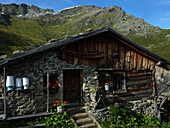 Seapn Alp in Navis Valley, Tux Alps, Tyrol, Austria