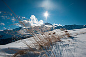 First snow on Rangger Koepfl, view to Rosskogel, Stubai Alps, Tyrol, Austria