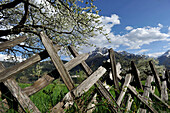 Wooden fence, Telfes, Stubai Valley, view to Serles, Stubai Alps, Tyrol, Austria
