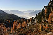 Autumn above Innsbruck, view to Inn Valley, Stubai Alps and Mieminger range, Tyrol, Austria