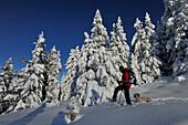 Snowshoeing on the Birgitzkoepfl, Stubai Alps, Tyrol, Austria