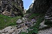 Climbing to Tschafatsch Saddle, Schlern, Dolomites, South Tyrol, Italy