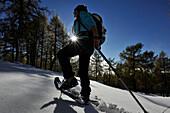 Snowshoeing on the Eulenwiese, Stubai Alps, Tyrol, Austria