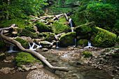 Stream flowing through Mossy Glen State Preserve, near Edgewood, Iowa, United States of America
