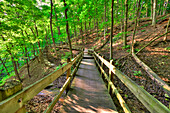 Wooden walkway to Bridal Veil Falls at Pikes Peak State Park, near McGregor, Iowa, United States of America