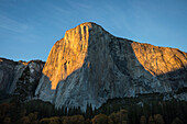 El Capitan El Cap bathed in late afternoon fall light in Yosemite Valley, Yosemite National Park, California, United States of America