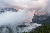 Winter storm in Yosemite Valley, Yosemite National Park, California, United States of America