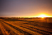 Glowing sunlight over farmland at sunset, Manitoba, Canada