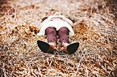 Caucasian teenage girl laying in tall grass