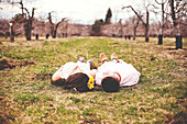 Couple laying on dirt path in vineyard