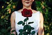 Korean bride smiling behind red rose