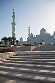 Steps leading to ornate domed building, Abu Dhabi, Abu Dhabi Emirate, United Arab Emirates