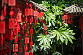 Red wooden Buddhist good luck charms and tropical vegetation, Hangzhou, Zhejiang, China, Asia