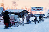 Lev Shvarts and Marcelle Fressineau arrive together at the Huslia checkpoint during Iditarod 2015